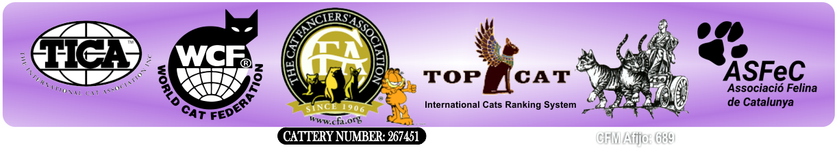 Logo Federations