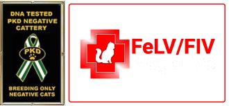 Logo PKD + FeLV