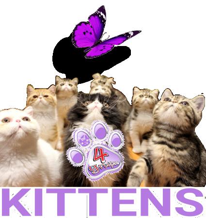 Logo Kittens