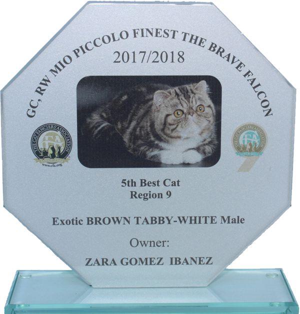 cropped-Glass-Award